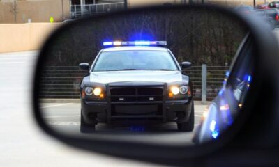 5 Things You Need to Do If You Have a Traffic Violation