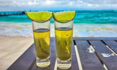 How to Distinguish Mezcal vs Tequila