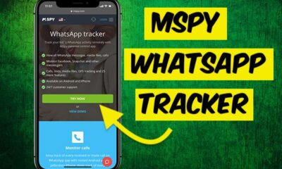 Whatsapp Tracker App
