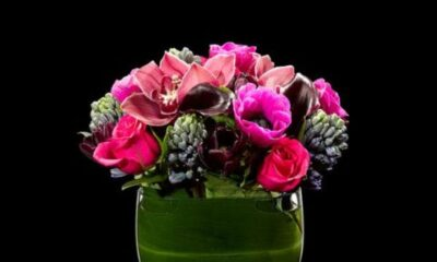Allure your love with Alluring Flowers