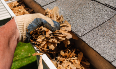 How Do Professionals Clean Your Gutters?