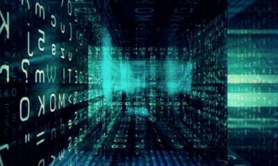 5 Essential Data Protection Tips Every Company Needs to Follow