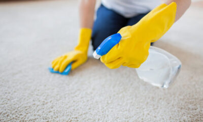 3 Smart Reasons to Have Your Carpet Professionally Cleaned
