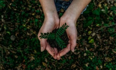 Preventing Environmental Catastrophes and Protecting Mother Earth