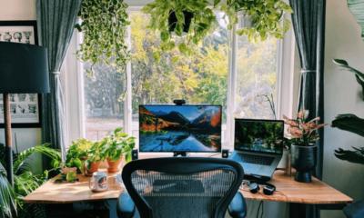 Make Your Office Desk Lively