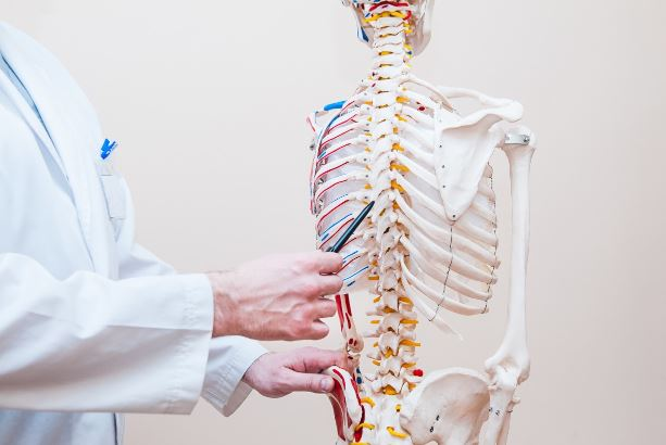 Spinal Cord Injury Lawyer Before Your Insurance Company