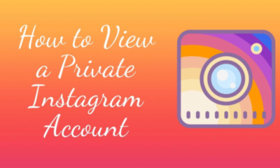 View Private Instagram Accounts